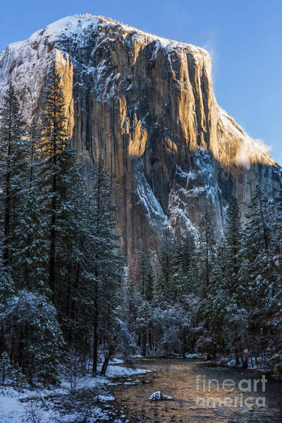 Photograph - El Cap by Anthony Bonafede