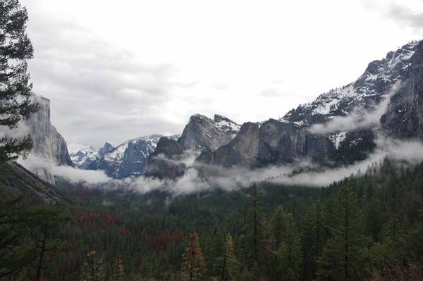 Photograph - El Capitan From Artist Point D by Phyllis Spoor