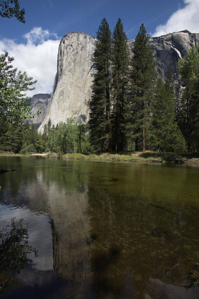 Photograph - El Capitan by Harold Rau