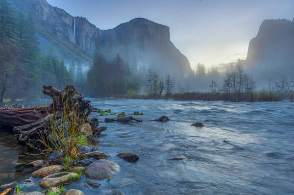 El Capitan Merced River Dawn Art Print
