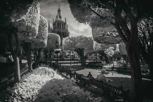 San Miguel De Allende Photograph - el Jardin by Sean Foster