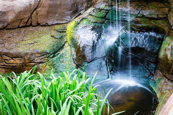 Photograph - El Paso Zoo Waterfall Long Exposure by SR Green