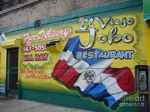 Photograph - El Viejo Jobo  by Cole Thompson