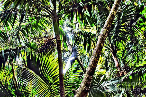 Wall Art - Photograph - El Yunque Canopy by Carey Chen