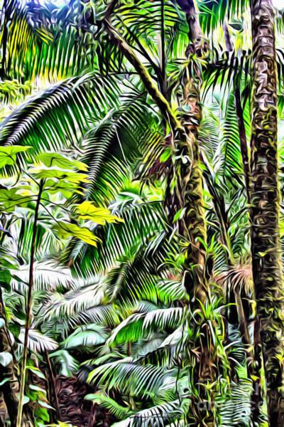 Wall Art - Photograph - El Yunque Rainforest 7  by Carey Chen