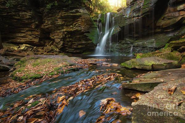 Wall Art - Photograph - Elakala Falls In Autumn  by Michael Ver Sprill