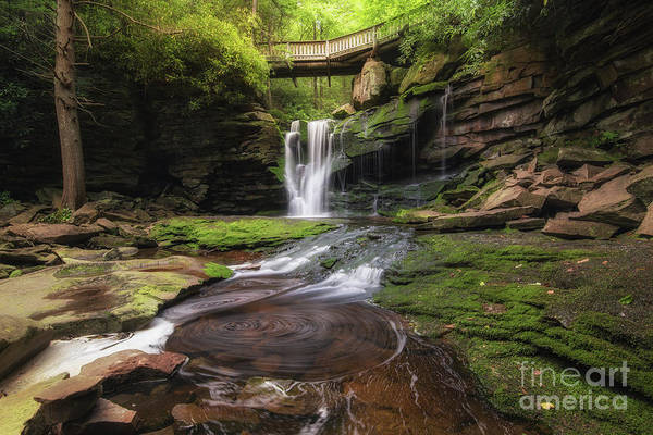 Photograph - Elakala Falls  by Michael Ver Sprill