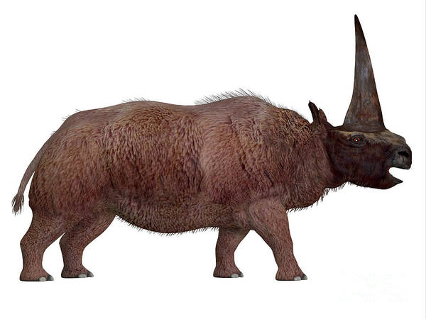 Moldova Wall Art - Painting - Elasmotherium Side Profile by Corey Ford
