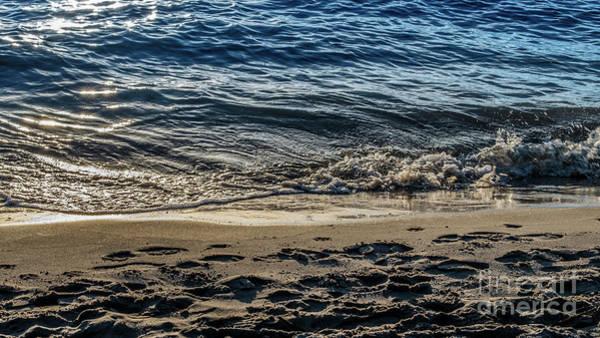 Photograph - Elbe Shine by Marina Usmanskaya