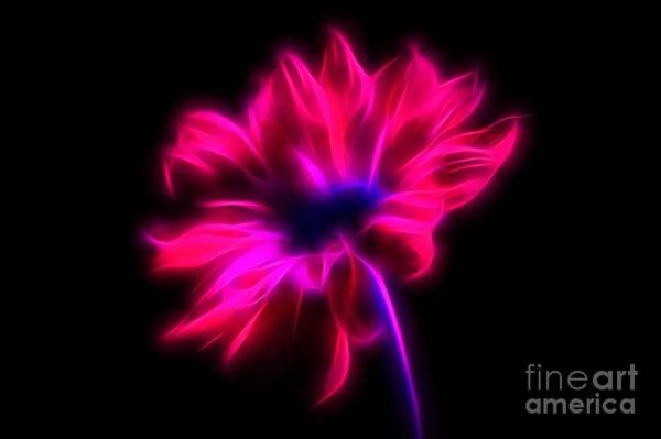 Neon Pink Photograph - Electric Bliss by Krissy Katsimbras