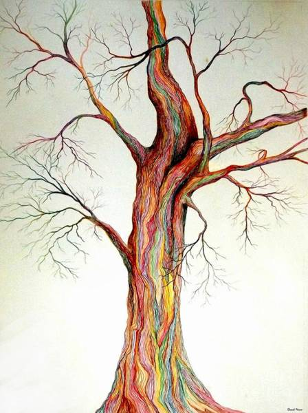 Drawing - Electric Tree by David Neace