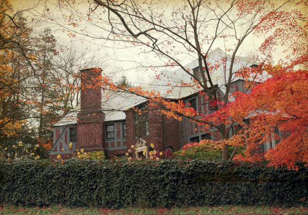 Photograph - Elegance In Autumn by Jessica Jenney