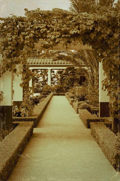 Wall Art - Photograph - Elegant Aged Path by Teresa Mucha