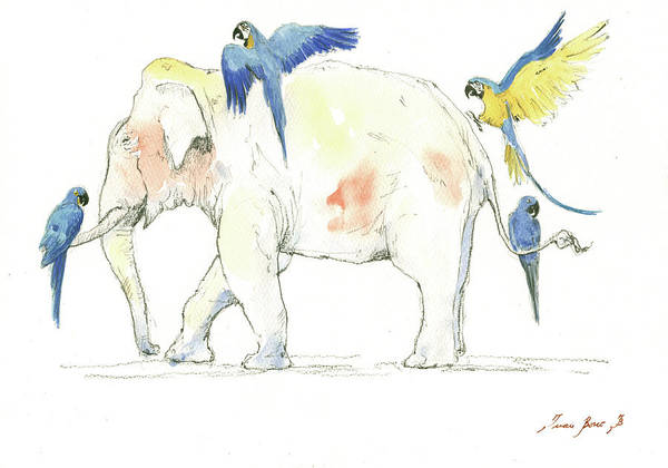 Tropical Bird Painting - Elephant And Parrots by Juan Bosco