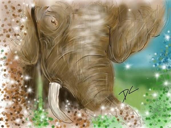 Digital Art - Elephant by Darren Cannell