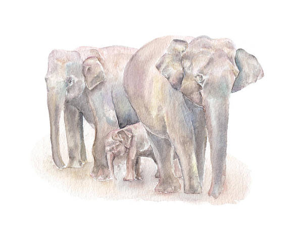 Painting - Elephant Family by Elizabeth Lock