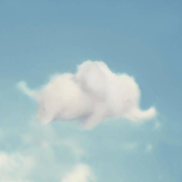 Kid Photograph - Elephant In The Sky - Square Format by Amy Tyler