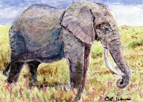 Painting - Elephant On The Savannah by Barry Jones
