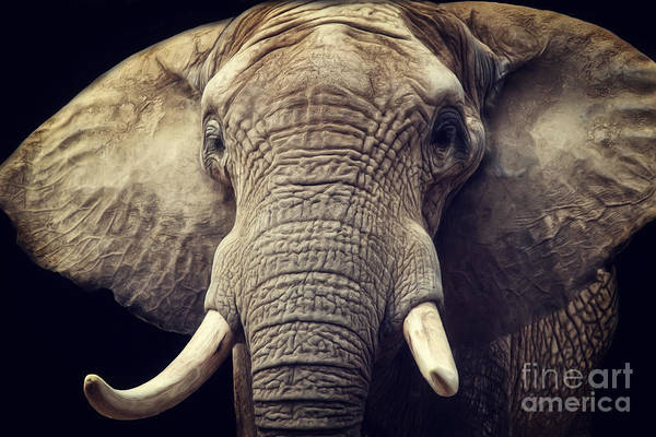 Digital Art - Elephant Portrait by Angela Doelling AD DESIGN Photo and PhotoArt