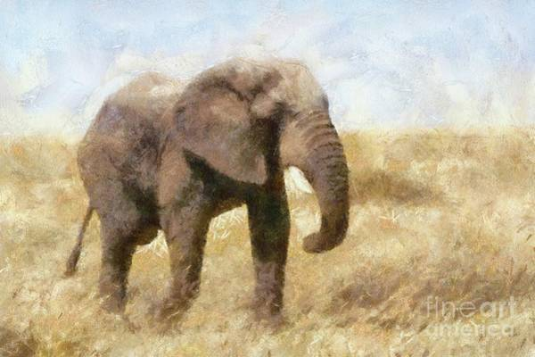 Wall Art - Painting - Elephant Wild by Sarah Kirk