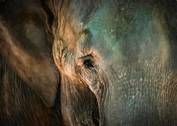 Digital Art - Elephants Eye by Charmaine Zoe
