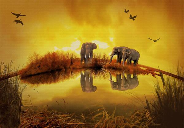 Photograph - Elephants On The Edge by Ericamaxine Price