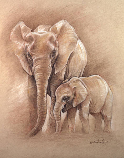 African Animal Drawing - Elephants - Wildlife Drawing by Dave Kobrenski