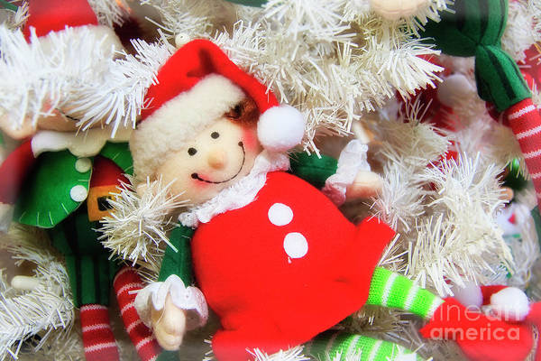 Photograph - Elf Doll Ornament by Jill Lang