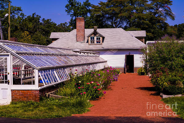 Jasmin Photograph - Elizabeth Garden Green House by Jasmin Hrnjic