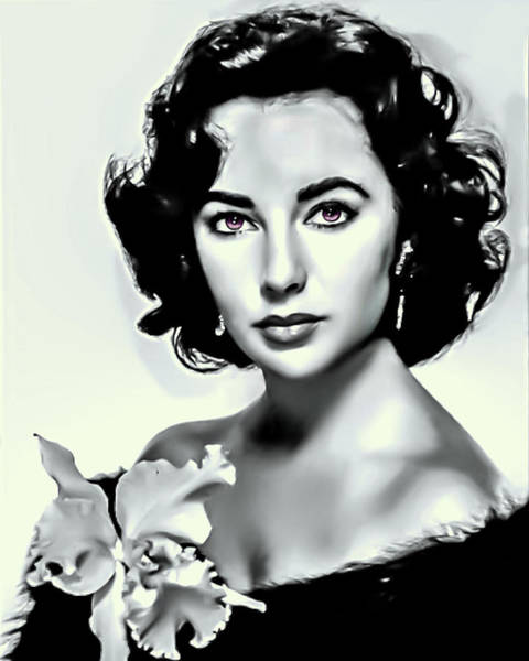 Photograph - Elizabeth Taylor by Movie Poster Prints