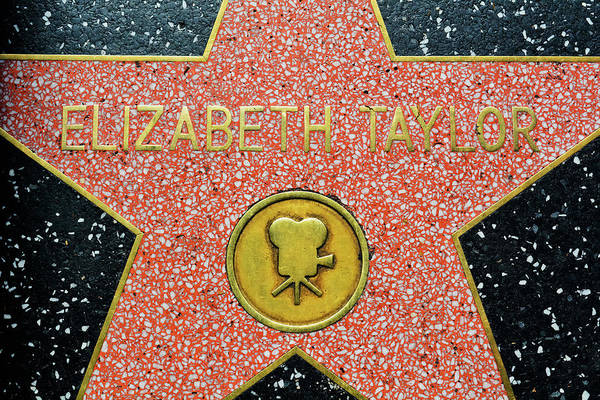 Photograph - Elizabeth Taylor Star by Kyle Hanson