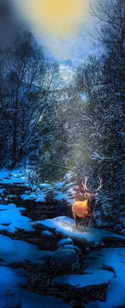 Colorado Wildlife Digital Art - Elk Creek by J Griff Griffin