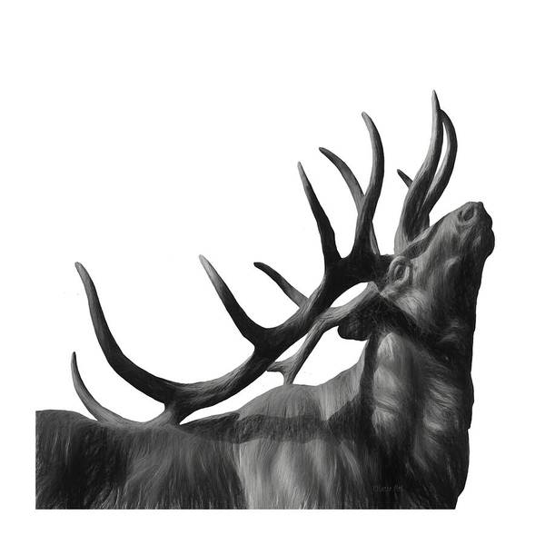 Painting - Elk In Black In White  by OLena Art - Lena Owens