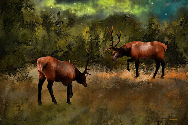 Painting - Elk In The Field At Night - Painted by Ericamaxine Price