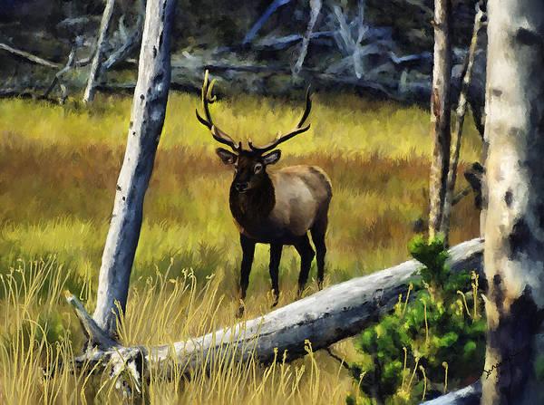 Painting - Elk In The Woods by Susan Kinney