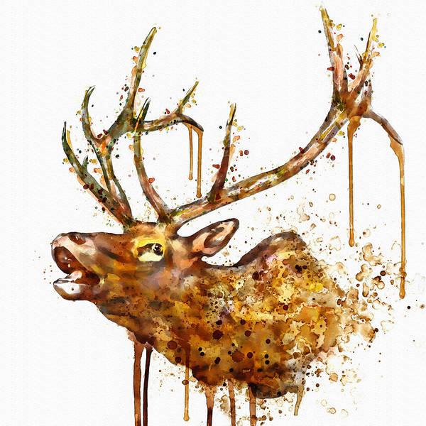 Elk Painting - Elk In Watercolor by Marian Voicu