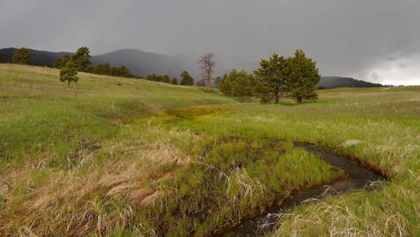 Photograph - Elk Meadow Rain by Dan Miller
