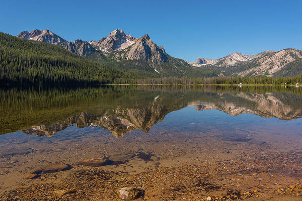 Photograph - Elk Mountain Reflections by Brenda Jacobs