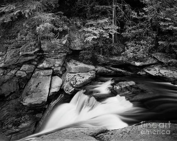 Photograph - Elk River Falls 2 by Patrick M Lynch