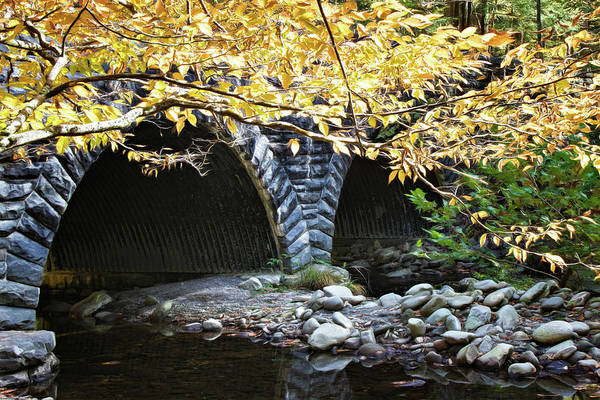 Wall Art - Photograph - Elkmont Bridge by Lana Trussell