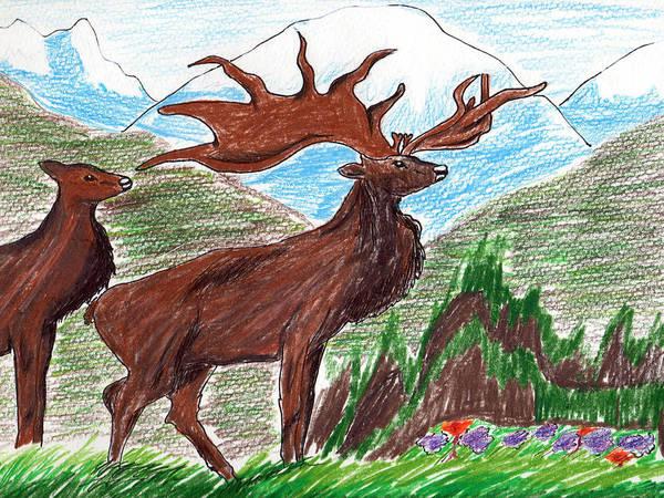 Elk Mountain Drawing - Elks by Lucy Lu