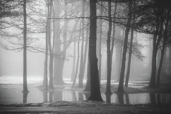 Photograph - Ellacoya Fog - January Thaw by Robert Clifford
