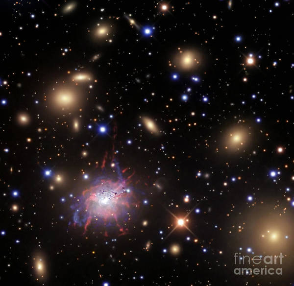 426 Photograph - Elliptical Galaxy Ngc 1275 by R Jay GaBany