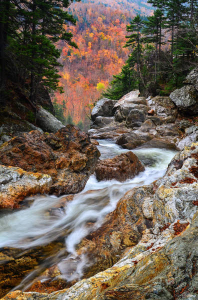 Photograph - Ellis River Autumn View by Michael Hubley