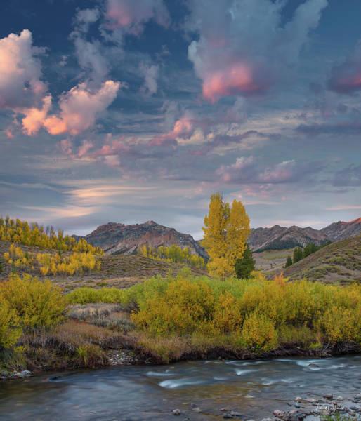 Photograph - Eloquent Autumn by Leland D Howard