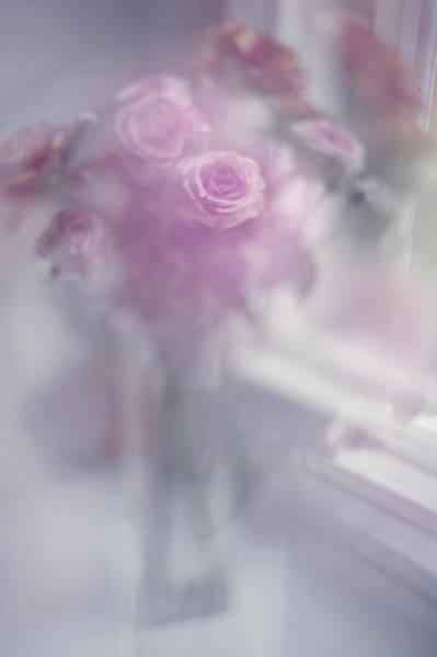 Rainbow Rose Wall Art - Photograph - Elusive Dreams. Impressionism by Jenny Rainbow