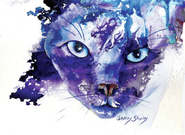 Painting - Elusive Siamese by Sherry Shipley