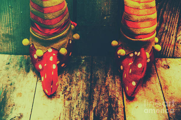 Christmas Decoration Photograph - Elves And Feet by Jorgo Photography - Wall Art Gallery