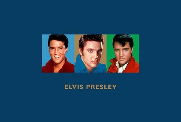 Wooden Shoe Digital Art - Elvis Presley - Triptych Designs by David Richardson
