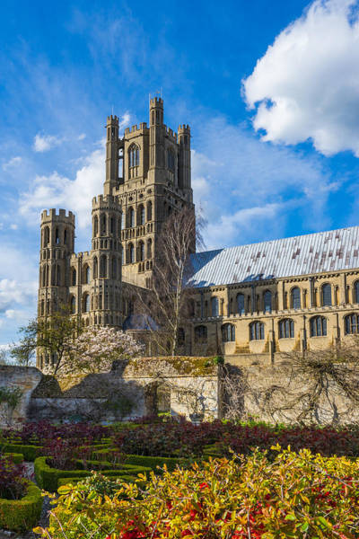 Ely Cathedral And Garden Art Print